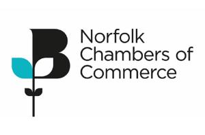 Norfolk Director 27